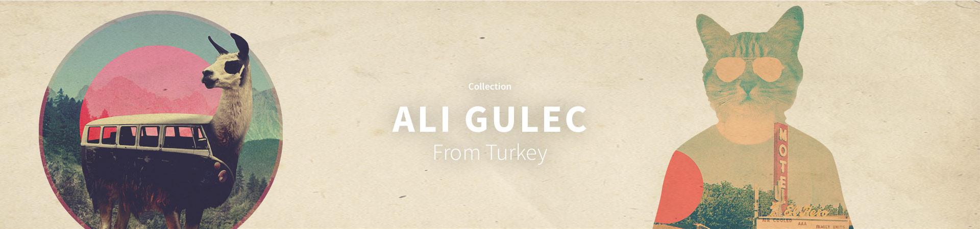 Ali Gulec