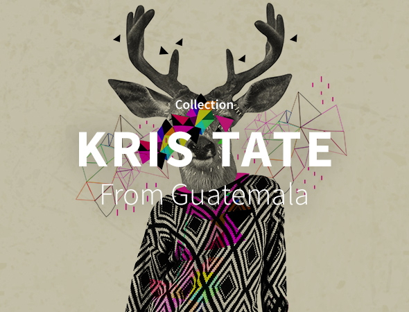 Collection wild animal et motif par Kris Tate