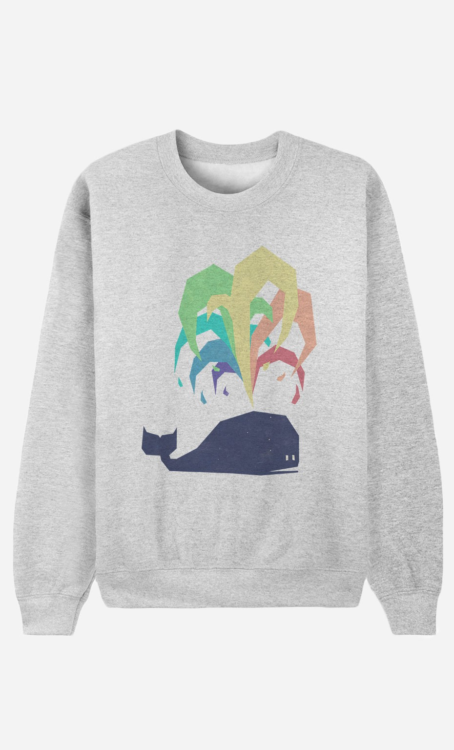 Sweat Homme Rainbow Whale