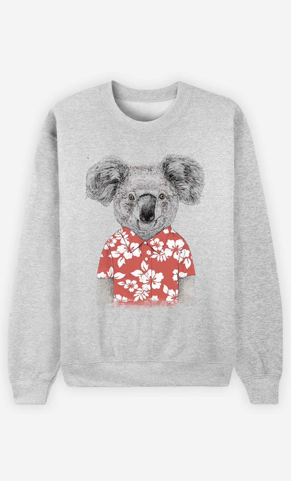 Sweat Homme Summer Koala Red