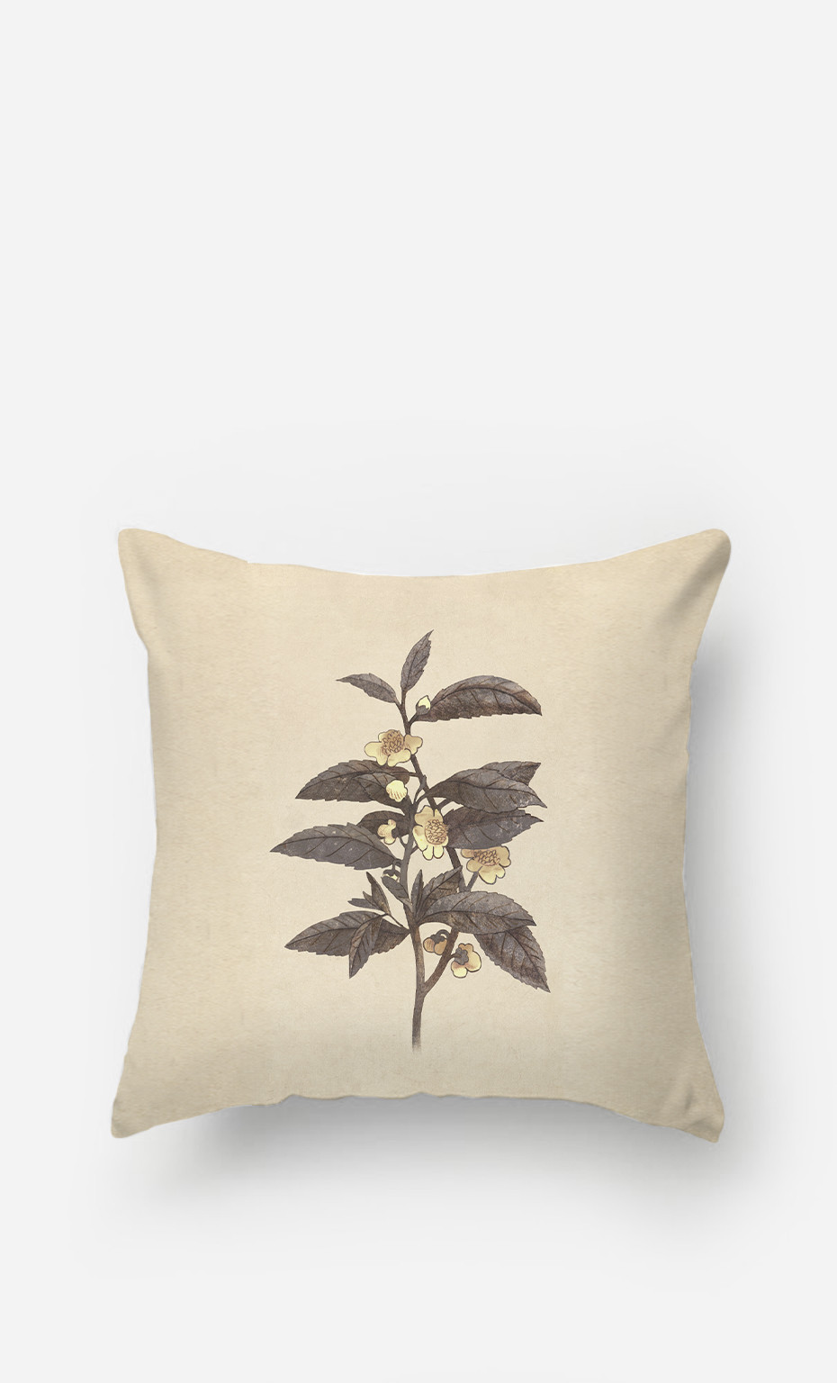 Coussin Late Bloom
