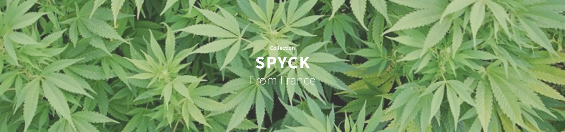 Spyck