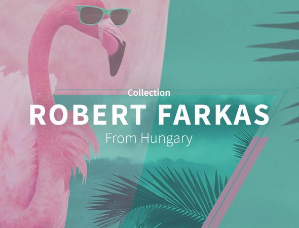 Wild animals, Marty Mcfly, lion, voici tout ce que vous pourrez trouver dans la gamme variée que propose Robert Farkas.